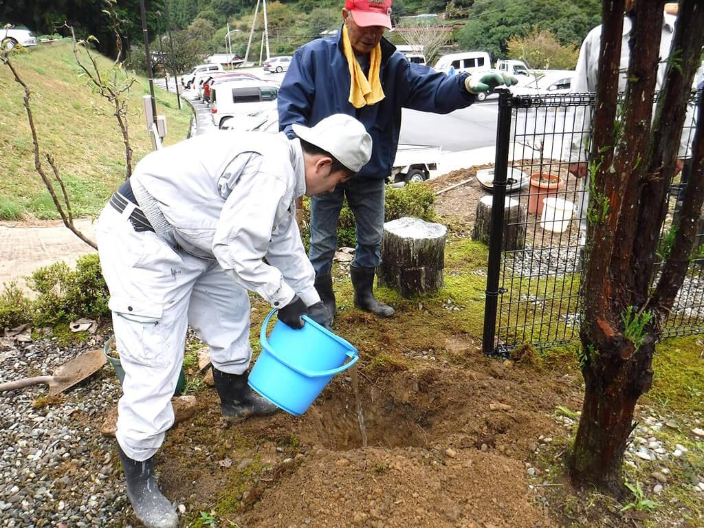 木を植える間に水をやる様子