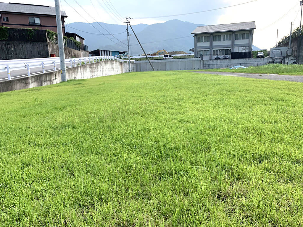 芝生が広がる屋外